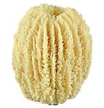 Glove Sponge