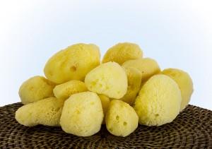South Pacific Silk Sponges