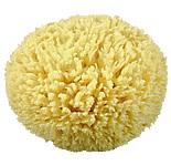 Rock Island Sea Wool Sponge
