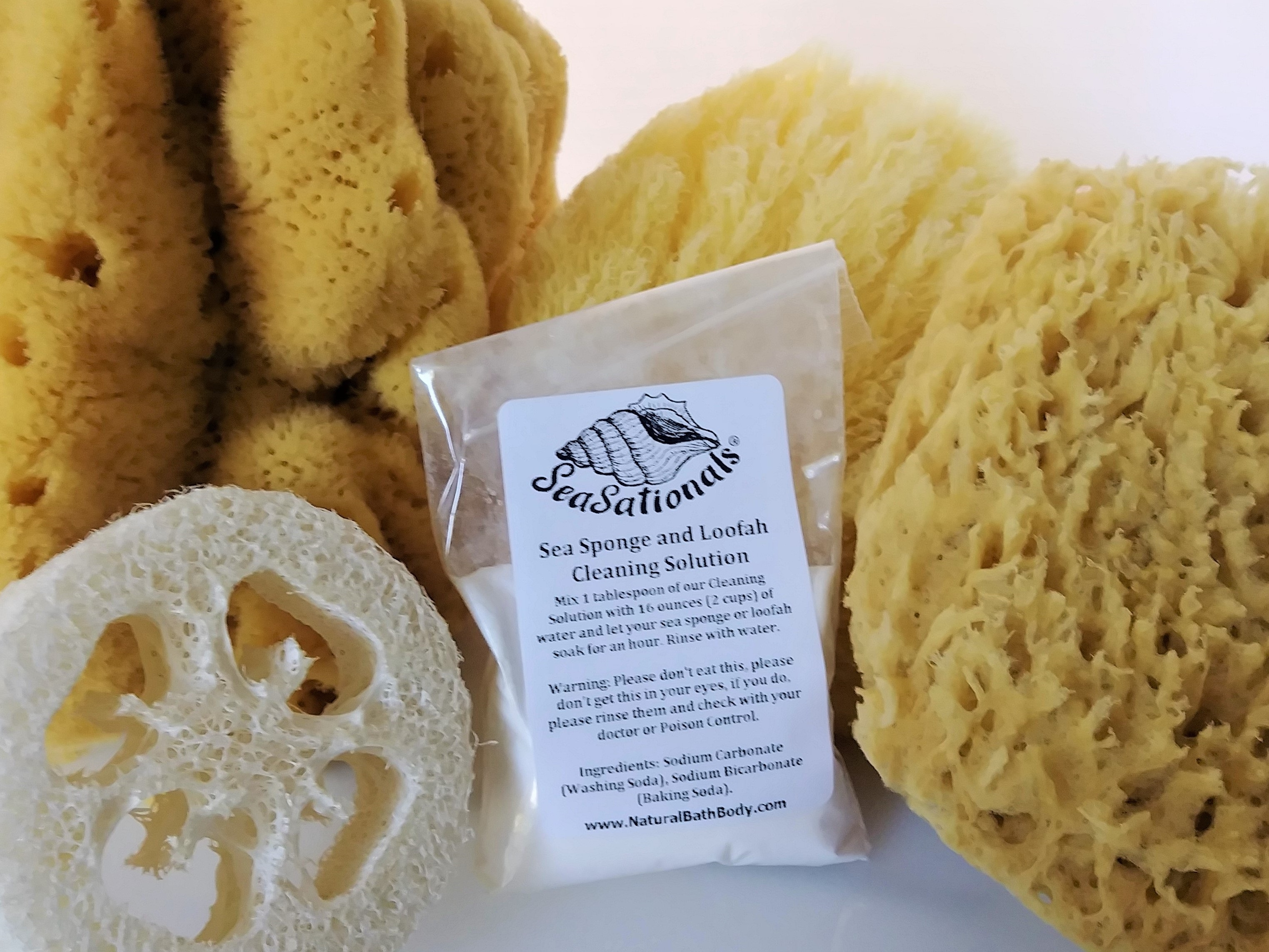 Sea Sponge Cleaning Solution Scented