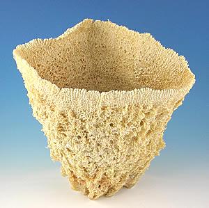 Wire Vase Sponge