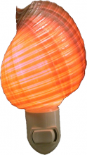 Shell Night Light - Tonna Shell By SeaSationals