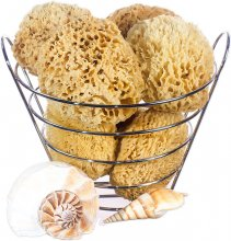 Prime Sea Wool Bath Sponges